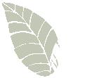 Haddenham Garden Centre - Leaf Icon Left
