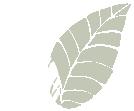 Haddenham Garden Centre - Leaf Icon Right